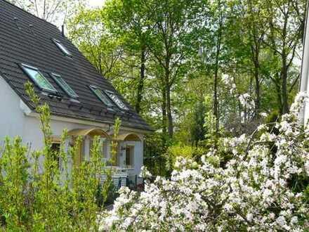 Erstklassige DHH in beliebter ruhiger Lage von Lichterfelde West : Stein Immobilien