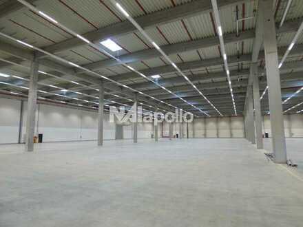 Neubau Logistikzentrum mit WGK 3 Flächen | Co-Alleinauftrag | PROVISIONSFREI