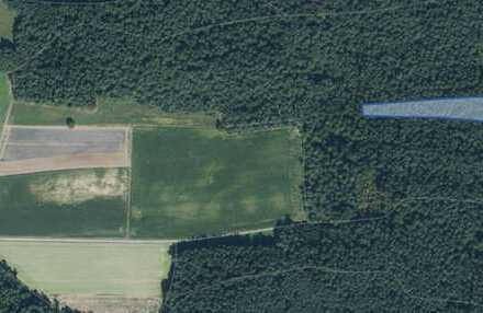 Waldgrundstück bei Aresing zu verkaufen!