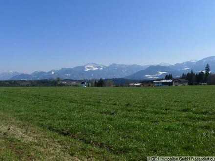 Interessante, gefragte landwirtschaftliche Ackerfläche mit Ruhebankerl in Söllhuben