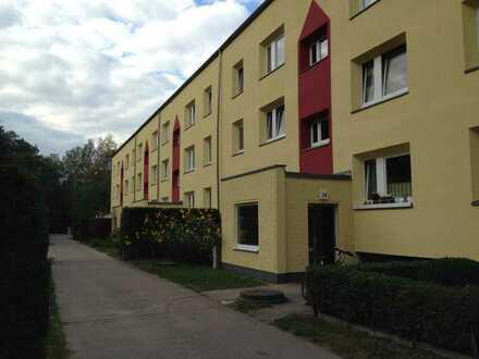 Vierzimmerwohnung am Waldrand von Damsdorf