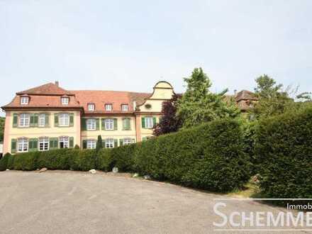 Endingen-Kiechlinsbergen ++ Herrlich Wohnen im Schloss!