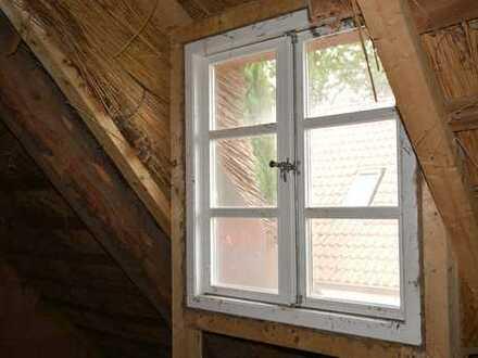 Dörfliche Idylle in guter Lage- Reetdachhaus zum Wohnen und Arbeiten