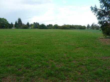 Bauernhof mit großen Grundstück in ruhiger Lage