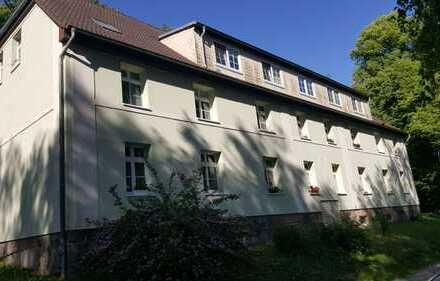 Große 3 Raum Wohnung im Dachausbau am Mühlenteich