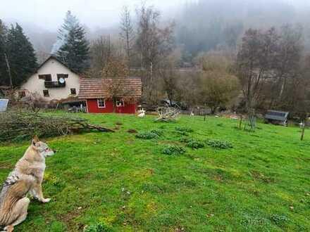 Bauernhof/ Selbstversorgerhof mit 43000m2, ehemaliges Mühlenanwesen