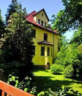 Vollständig renovierte 3-Zimmer-Wohnung mit Balkon und EBK in Dresden
