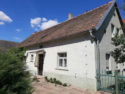 Einfamilienhaus mit Scheunen auf großem Grundstück (Abrissobjekt)