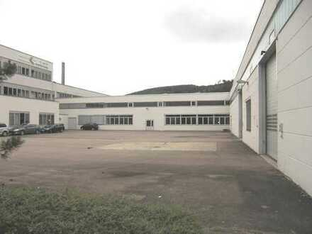1200 m² Lagerhalle mit guter Verkehrsanbindung