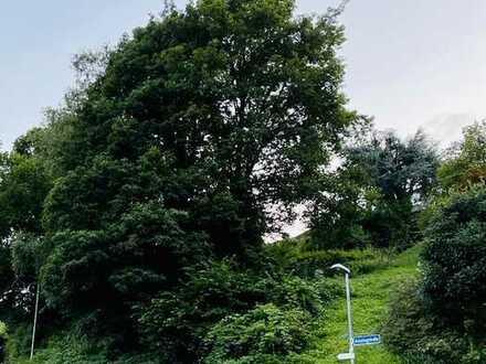 Grundstück: Wohnen am Fuße von Schloss Eberstein