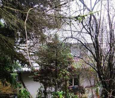 Immobilie auf Traumgrund mit 1000 Aspekten