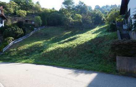 Neuer Preis - Baureifes Grundstück für 1-FH oder 2 Doppelhaushälften in guter Lage Forbach-Gausbach