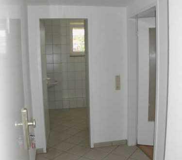 Vollständig renovierte 1-Zimmer-Wohnung mit EBK in Brieselang