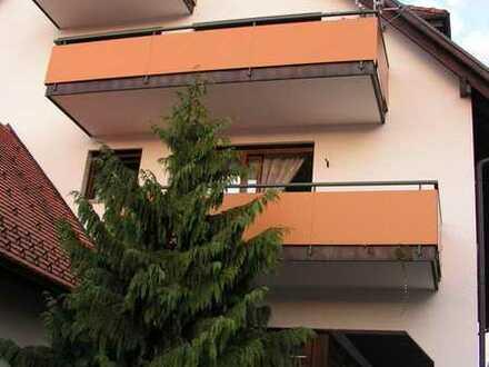 Schöne 2-Zi. Wohnung mitten in Oberlauchringen