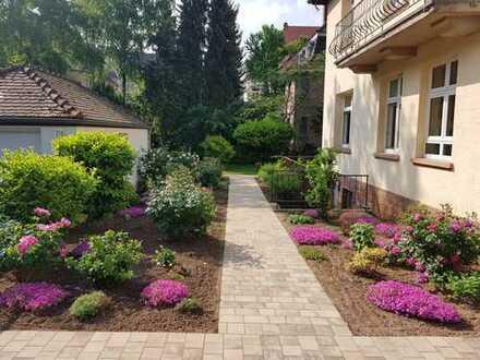 Schöne, geräumige 3,5 Zimmer Whng. in HD Neuenheim sehr gut angebunden