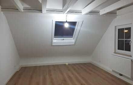 Schöne, geräumige zwei Zimmer Wohnung in Neckartenzlingen (Kreis Esslingen)
