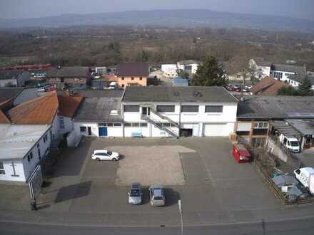 Ihr neuer Firmensitz in Ingelheim