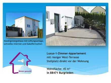Luxus-1-Zimmer-Appartment nur 85€ NK fix