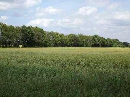 17,19 ha Landwirtschaftliche Nutzflächen bei Brettorf