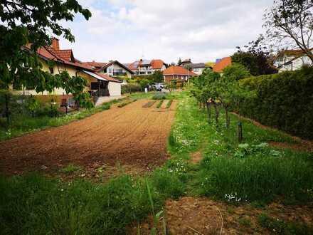 Baugrundstück 917m2 von privat in Alzey Weinheim