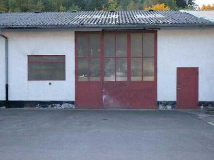 Halle als Lager / für Handwerk auf Betriebsgelände in Rodalben