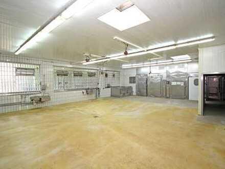 Lager, Versand, Produktionsbetrieb mit Kühlräumen und Ladenlokal