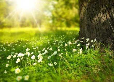 Wohnen und Leben in traumhafter Natur! Inkl. Grundstück