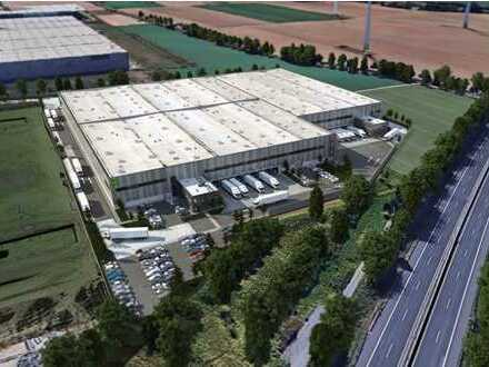 Logistikzentrum Nufringen / 13.000 qm² / Neubau