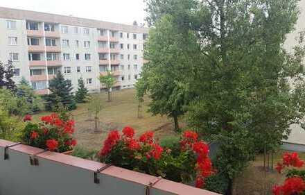 Wohnen im Grünen! Schöne ruhige 3-Zimmer Wohnung in Coswig