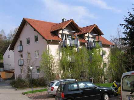Moderne, helle u. freundliche Wohnung in Rodalben mit Balkon 1.OG Südseite, Parkplatz