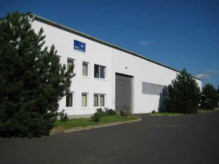Produktionshalle 1100 m²