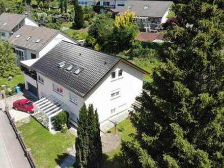Vollständig renovierte 5-Zimmer-Wohnung mit großer Terrasse