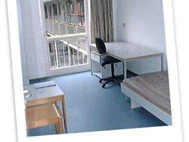 TOLLES Zimmer in 2-WG