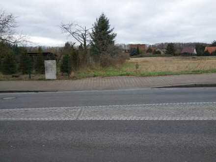 Beste Verkehrsanbindung-Brandenburg-Stadt oder Werder/Havel-Potsdam-Berlin- per PKW, Bus oder Bahn