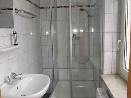 Renovierte bezugsfreie 1-Zimmer Wohnung in Zwickau-Marienthal
