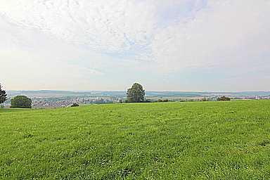 Ca. 15.000 m² Wiesengrundstück am Waldrand, beeindruckende Natur-Idylle mit herrlichem Panorama