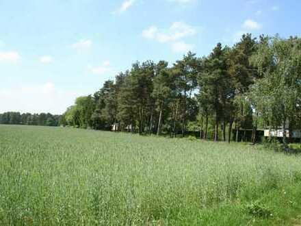 Ackergrundstück in Ortsrandlage von Jeserig!