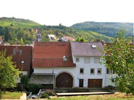 Teilmodernisiertes Bauernhaus mit riiiiesiger Scheune und Photovoltaikanlage
