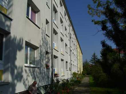 Wohnen in Möckern in Waldnähe