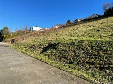 Eberbach-Ot: Riesiges Grundstück in Naturlage!