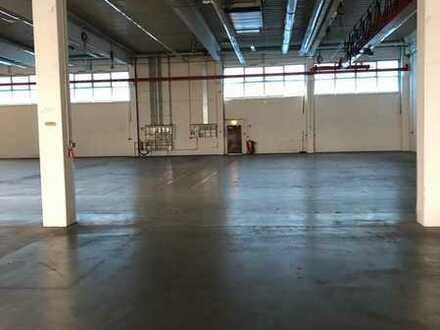 Provisionsfrei: ca. 1.500 m² ebenerdige Hallenfläche zzgl. Büro, direkt vom Eigentümer