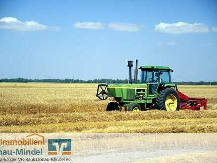 Landwirtschaftliche Grundstücke in Schabringen zu verkaufen!