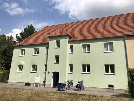 Helle, Geräumige 4 Rwhg in Rötha mit Tgl. Bad , großen Balkon,