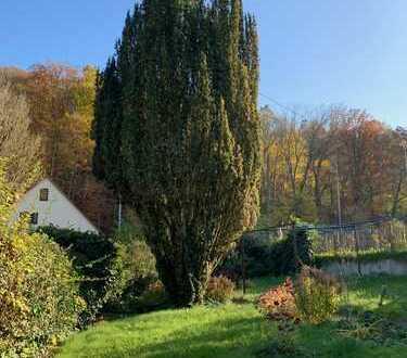 Freistehendes 1- bis 4-Familienhaus, *POTENZIAL*, großer Garten, Leerstand
