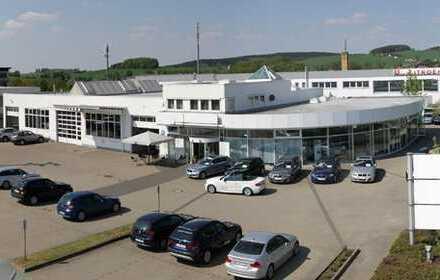 Modernes Autohaus mit viel Stellfläche in Oelsnitz/V. zu verkaufen