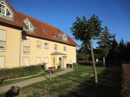 Schöne frisch renovierte 3 Zimmer Wohnung in Weinböhla
