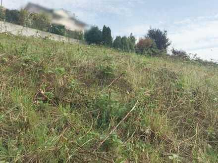 # Traitteur Immobilien - Sonniges Grundstück mit Aussicht