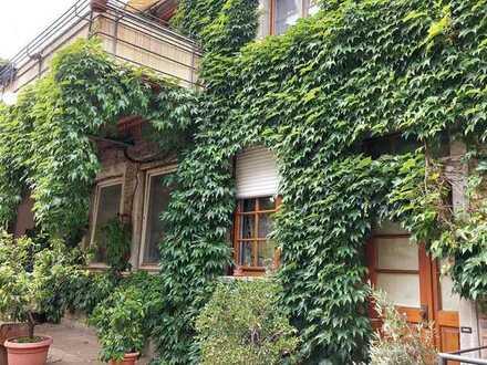 Vollständig renovierte 2-Zimmer-Hochparterre-Wohnung mit Einbauküche in Steinweiler