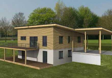 Ökologisches Holzhaus in traumhafter Südhanglage