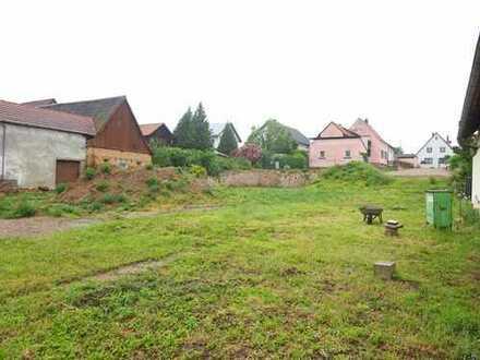 Bauherren aufgepasst! Großes Grundstück für Wohnungsbau oder Reihenhäuser im Ortskern!